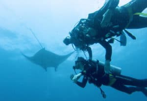 discovery dive with Manta Rays Warnakali dive center Nusa Penida Manta Point